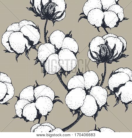 Vintage vector cotton flowers seamless pattern. Engraving technique. Can be used for a rustic wedding, greeting cards, textile or prints.