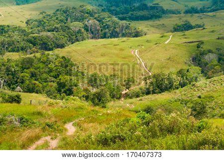 Trekking track through Great Savanna, Canaima National Park Venezuela
