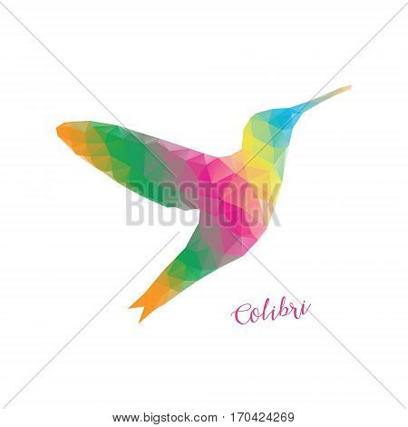Low poly colibri bird colorful. Colibri polygonal colorful isolated