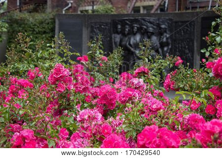 Kate Sheppard memorial and pink camellias in front of in in Christchurch New Zealand poster