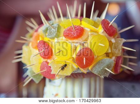 Fruit jelly on a skewer. Delicious dessert