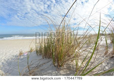 sunny afternoon on a beach in North Carolina. This is Kure Beach in North Carolina