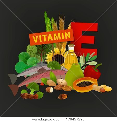 Vitamin E vector illustration. Foods containing vitamin E with a letter E. Source of vitamin E - nuts, corn, vegetables, fish, oils isolated on dark grey background
