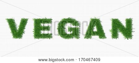 Ecology nature design. The text vegan is made of grass. Environmental concepts for healthy lifestyle, natural foods. Suitable for ads, banners, cards. Vector illustration. Horizontal location.