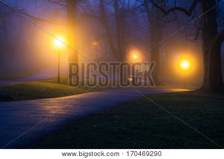 foggy autumn evening in the park