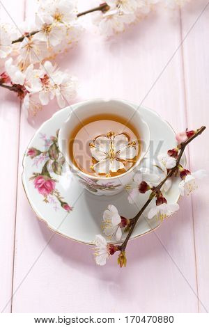 Cup of green tea and spring  flowers  on  light pink wooden table.