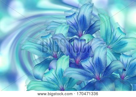 lily bright blue-turquoise on turquoise background. floral collage. flower composition. For design. Nature.