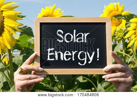 Solar Energy - female hands holding chalkboard in the summer garden with sunflowers in the background