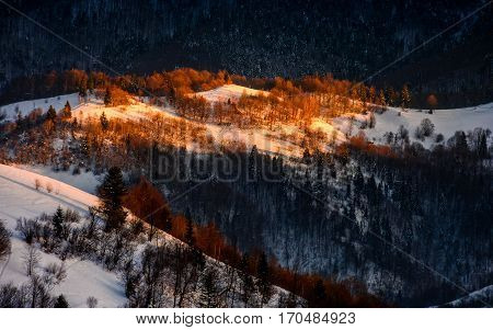 Sunrise In Winter Mountains