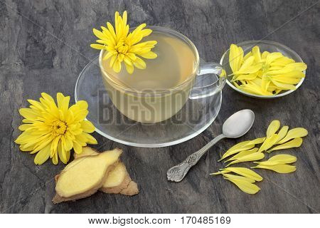 Chrysanthemum herb flower tea with glass tea cup with ginger spice and old spoon, also used  in traditional chinese herbal medicine.
