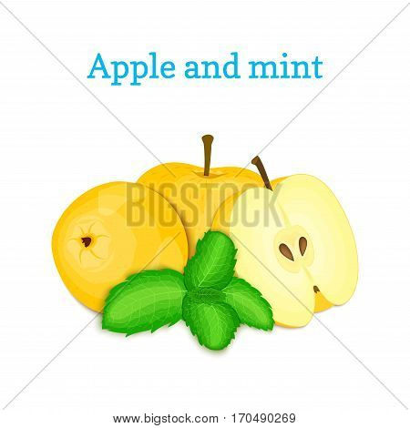Vector composition of a few yellow apples and mint leaves. Fresh apple fruits appetizing looking. Group of tasty ripe apple with pepper mint leaf packaging design of juice breakfast healthy vegan food