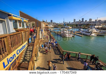 San Francisco, California, United States - August 14, 2016: Aerial view of San Francisco skyline from Sea Lion Center. Yachts docked at Pier 39 Marina, a popular tourist attraction for Sea Lions.