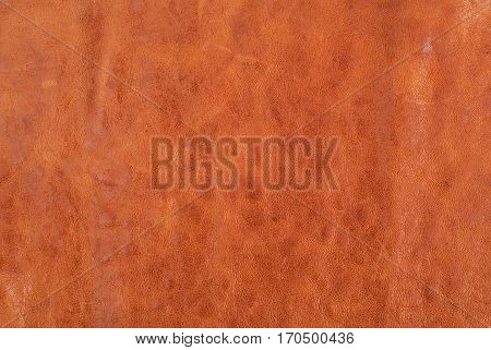 Brown leather texture background. Copy space for text.