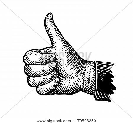 Symbol thumbs up. Hand gesture sketch. Vector illustration isolated on white background
