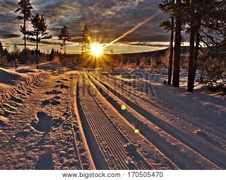 Ski trails with sun beams in the north of sweden