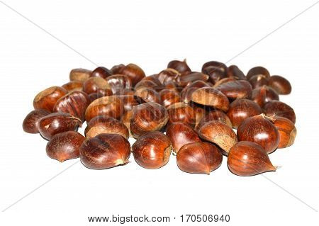Chestnut pictures with natural crust and without crust