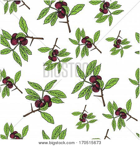 Branch with berries and green leaves on white blackground. Seamless colorful vector pattern. Could be used for textile web design