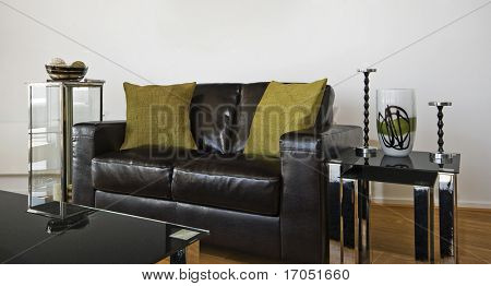 luxury designer leather sofa with a glass top coffee table and decoration