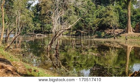 Beautiful lake near Preah Khan Temple in Siem Reap, Cambodia. Preah Khan has been left largely unrestored with trees and other vegetation growing among the ruins.