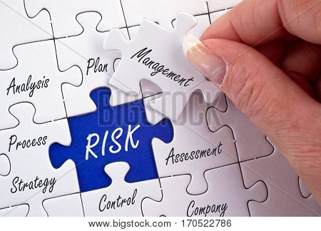 Risk Management - business concept puzzle with female hand and text