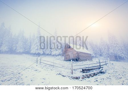 cabin in the mountains in winter. In anticipation of the holiday. Carpathian, Ukraine, Europe.