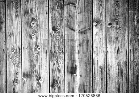Wood texture background viewed from above, close-up.