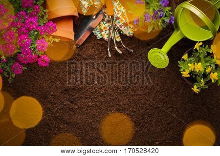 Garden tools, flowers and seeds on soil