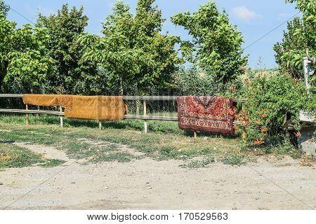 Drying Of Old Carpet On The Fence. Wall Carpets