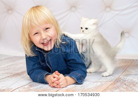Girl lying down and laughing. Kitten pushing her shoulder. Rare coloring - a silvery chinchilla. Blue eyes.