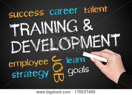 Training and Development - Business concept chalkboard