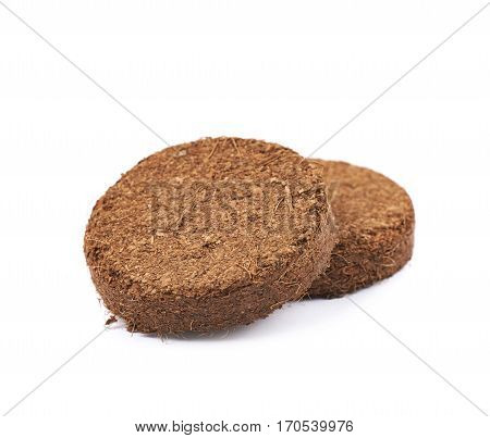 Compressed compost tablet isolated over the white background