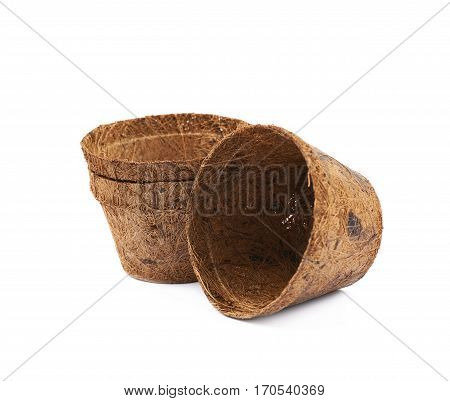 Degradable coconut pot isolated over the white background