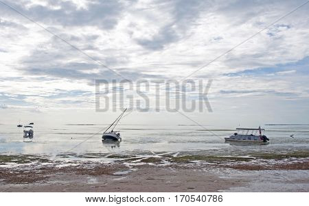Several sailboats stranded in shallow water on an overcast day. Crystal Beach, Florida.