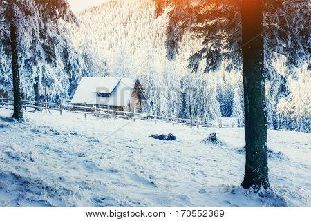 cabin in the mountains in winter. Carpathian Ukraine Europe