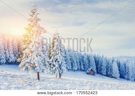 cabin in the mountains in winter. Carpathian Ukraine Europe.