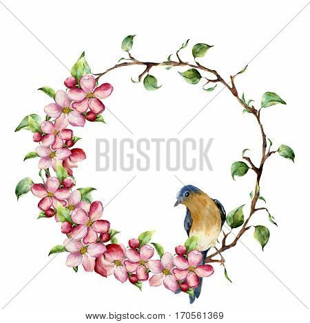 Watercolor wreath with tree branches, apple blossom and bird. Hand painted floral illustration isolated on white background. Spring elements for design