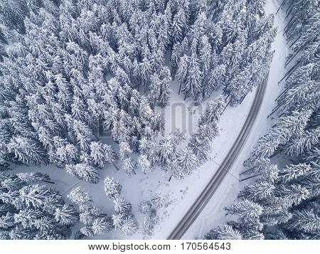Road in snowy winter forest bird's eye view