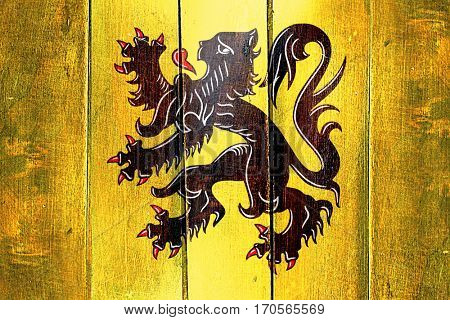 Vintage flanders, vlaanderen flag on grunge wooden panel