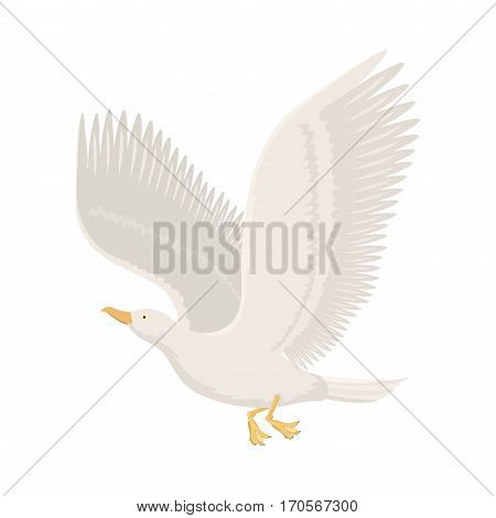Cartoon gull flying bird vector illustration. Cute fauna feather flight animal silhouette. Spring freedom natural concept. Wildlife drawing isolated pet.