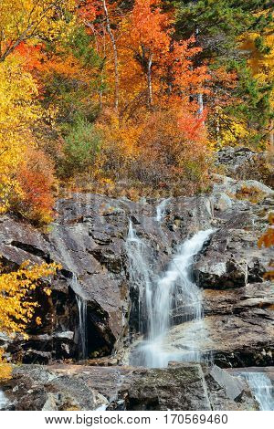 Colorful Autumn creek, White Mountain, New Hampshire.