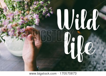 Life quote. Motivation quote on soft background. The hand touching purple flowers. Wild life,