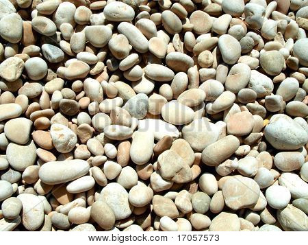 Beach gristle background