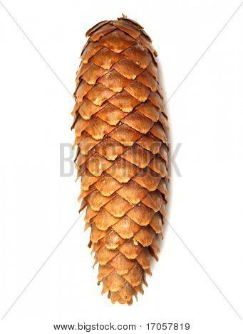 cone on white