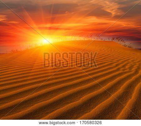 Hot sunset scene in desert