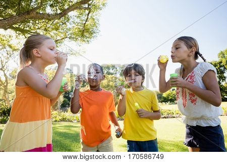 Children playing with bubble wand in the park