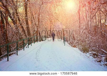 a man jogging down a snowy path in a local park with trees lining both sides (FOCUS ON THE PATH)