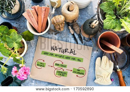 Healthy Natural Super Food