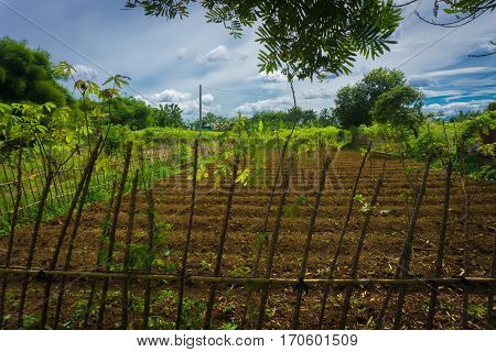 Farm field already fertilized and ready to cultivate surrounding by wood fence and beautiful sky as background photo taken in dramaga bogor indonesia java