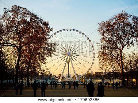 PARIS, FRANCE - CIRCA DECEMBER 2016: The Big Wheel on Concorde square as seen from the Tuileries Garden.