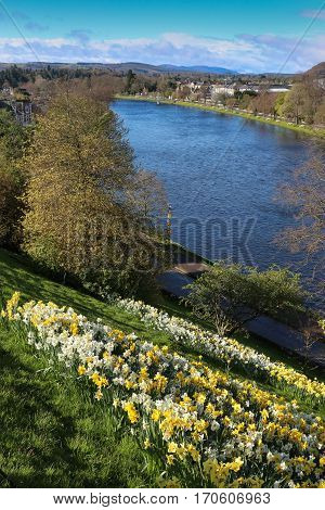 River Ness in Inverness, Scotland, on a sunny day with daffodils and distant hills, blue sky